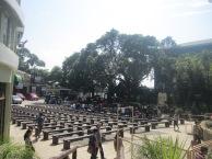 3-divine-mercy-national-shrine-marilao-bulacan