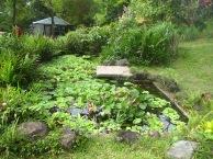 pinto-art-museum-pond