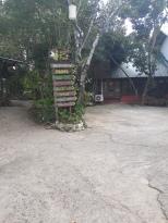 Bohol-bee-farm-philippines