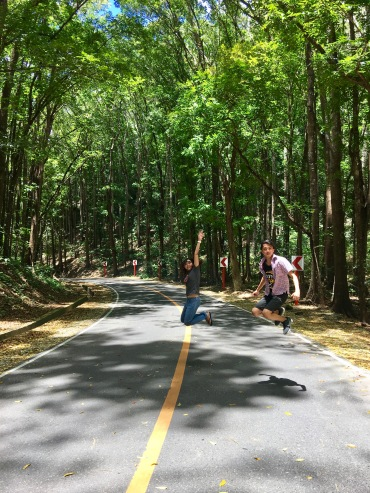 Jumpshot-manmade-forest-bohol-philippines